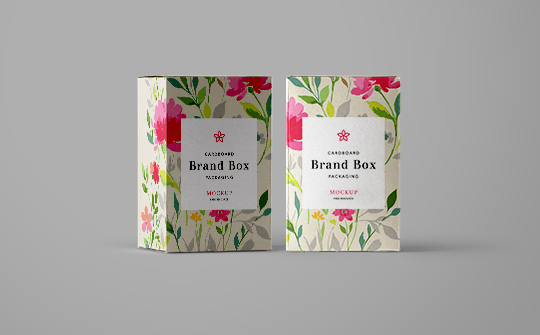 540 x 335Cardboard-Box-Packaging-Brand-Mockup.jpg
